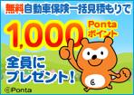 自動車保険の無料一括見積で全員に1,000P!